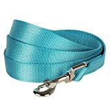 "Blueberry Pet Essentials 19 Colors Durable Classic Dog Leash 5 ft x 3/4"", Turquoise, Medium, Basic Nylon Leashes for Dogs"
