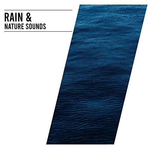 Rain Sound Studio, Rain and Nature & Relaxing Music Therapy