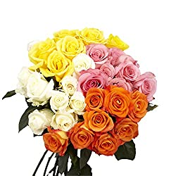 50 Assorted Fresh Cut Roses - Best Bridal Shower Decorations
