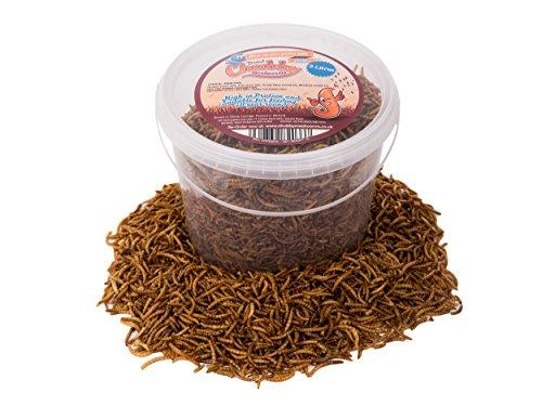 Vers de farine séchés par Chubby Mealworms - 3l