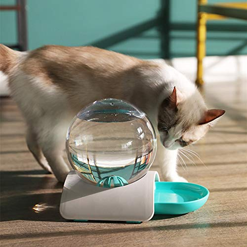 N/D Bebederos Gato, Sifón Principio automático del Animal