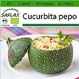 SAFLAX - BIO - Zucchina - Tondo di Nizza - 5 semi - Cucurbita pepo