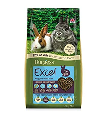 Excel Burgess Junior and Dwarf Nuggets with Mint Rabbit Food 10 kg by Burgess Pet Care