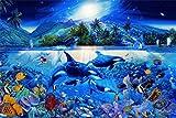 1art1 54706 Unterwasserwelt - Orkas, Majestätische Wasserwelt 1-Teilig Fototapete Poster-Tapete 175 x 115 cm