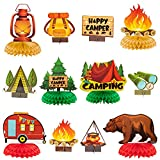 OSNIE 12Pcs Camping Theme Honeycomb Centerpieces Table Topper Happy Birthday Table Decor Have Camper Adventure Party Decorations Supplies Cardboard Cutout Bears Tent Bonfire Party Favors Photo Booth Prop