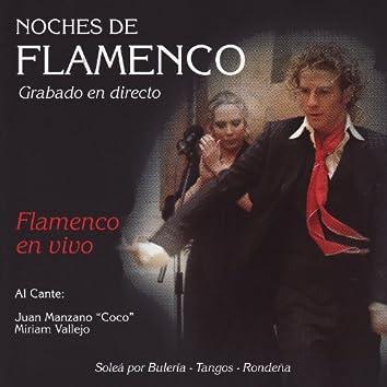 Noches de Flamenco - Flamenco en Vivo