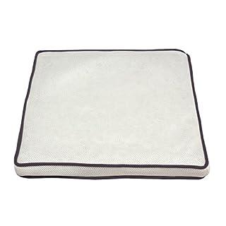 アイリスオーヤマ エアリークッション 高反発 通気性 洗える 抗菌防臭 ホワイト 43×43cm CAR-4343