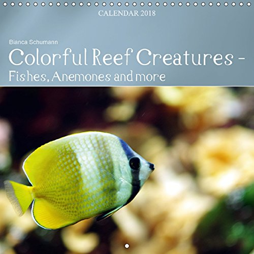 Colorful Reef Inhabitants - Fishes, Anemones and more (Wall Calendar 2018 300 × 300 mm Square): Tropical reefs provide a wide variety of animals and ... [Kalender] [Apr 01, 2017] Schumann, Bianca