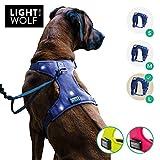 riijk LED Hundeweste für mehr Sicherheit, Warnweste in Blau, Hundegeschirr Weste verstellbar, 6 helle Lichter, Leuchthalsband