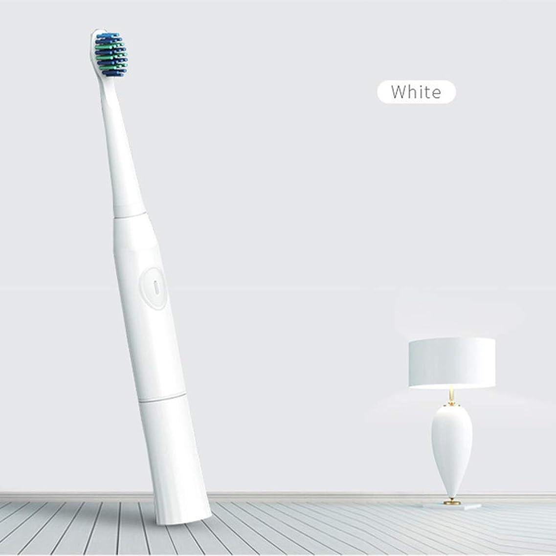 構造的逆ピーブBeTyd 2つの取り替えのブラシヘッド電池が付いている電動歯ブラシ口頭衛生ブラシの音波歯ブラシ (Color : White)