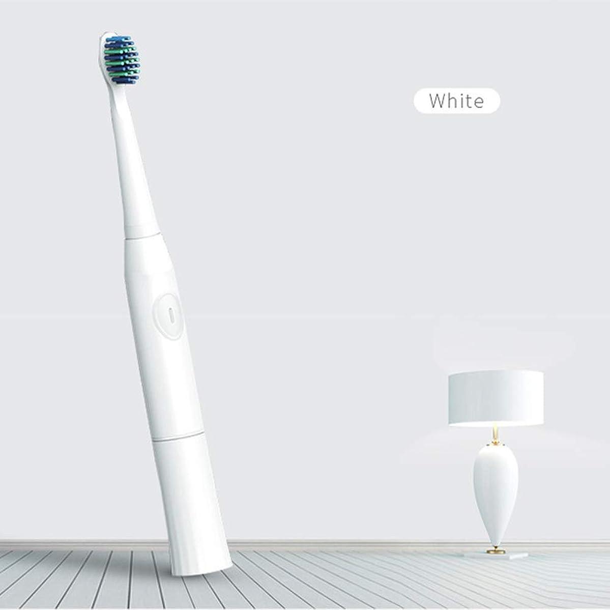 BeTyd 2つの取り替えのブラシヘッド電池が付いている電動歯ブラシ口頭衛生ブラシの音波歯ブラシ (Color : White)