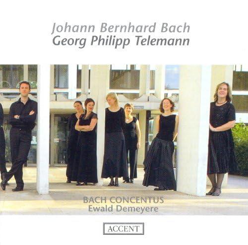 Bach Concentus