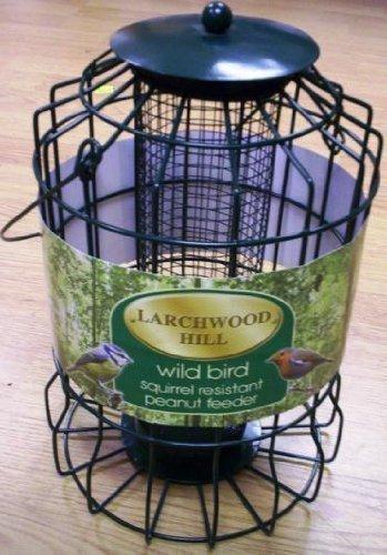 Larchwood Hill Mangeoire à oiseaux anti-écureuils