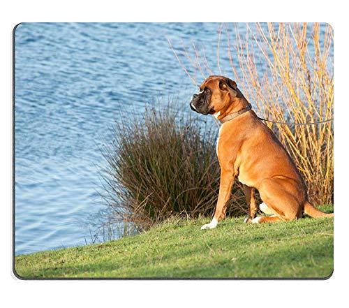 Mauspad Naturkautschuk Mousepad Boxer Hund Sitzen an einem See