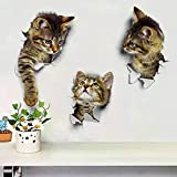 Car Wall Stickers - 3D Cat Stickers - 6 Pcs Room Decoration,Toilet Seat,Laptop,Wall Decals