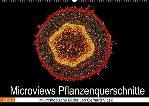 Microviews - Pflanzenquerschnitte (Wandkalender 2022 DIN A2 quer)