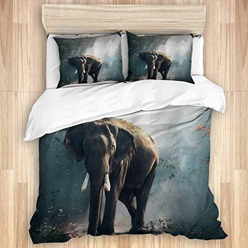 Funda nórdica, Elefante Africano El Elefante Salvaje está Caminando en el Bosque de la Jungla Tema Animal Safari Art, Juego de Cama de Microfibra de Calidad Ultra Suavidad Cómodo diseño Moderno