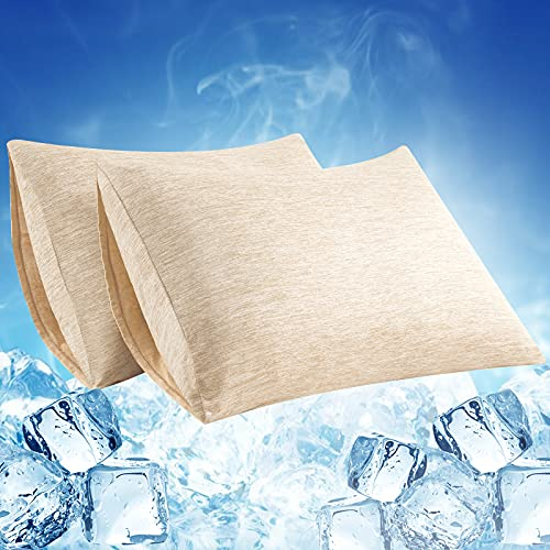 Elegear 2 PCS Cooling Pillow Case Protects Skin and Hair Pillow cover...