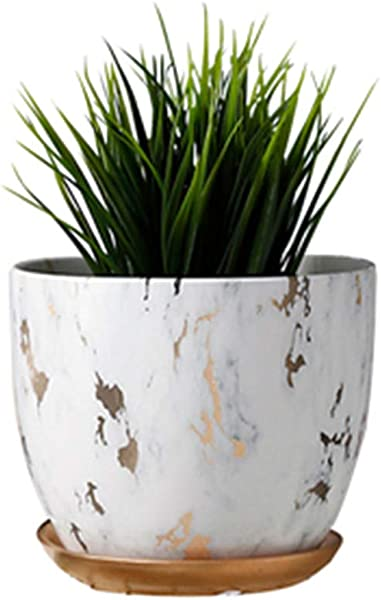 Marble Plant Pot 6 Inch Modern Nordic Style Ceramic Marble Look Scrub Pots For Plants Plant Pots Indoor With Drainage Hole And Ceramic Tray For Succulents Plants Flowers