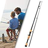GWFISH Canne a Peche Silure Surfcasting Truite Spinning, Mer Fishing Rod Carpe Télescopique 99%...