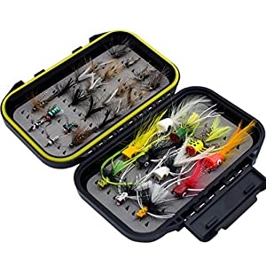 Fly Fishing Flies Kit Fly Assortment Trout Bass Fishing with Fly Box, with Dry/Wet Flies, Nymphs, Streamers,Fly Poppers (pop& Streamers)