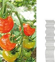 10 Tomatenspiralstäbe 110cm voll verzinkt Tomatenstab Tomaten Ranke Pflanzstab Stahl Profi Qualität Tomatenspiralstab