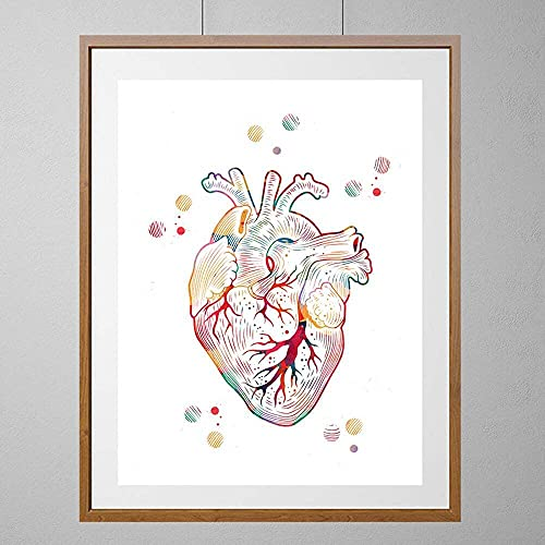 The Heart watercolor print the human heart poster medical art anatomy art heart illustration anatomical heart print surgery science art gift Wall Art Print Poster, Canvas Gallery Wraps Wall Decoration