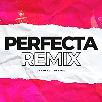 Perfecta (Remix)