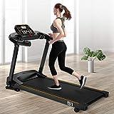 Smart Treadmill 2.0HP Speakers Bluetooth Folding Electric Motorized Running Treadmill w/Incline LCD Display 22.04'' Wide Tread Belt 12 Preset Programs Walking Jogging Running Machine MAX 220LB (B)