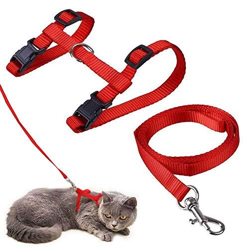 Katzengeschirr mit Leine Verstellbare Geschirre Katzenleine Kätzchenhalsband Ausbruchsichere Katzenweste für Kleine Katzen (Rot)