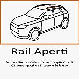 BARRE PORTATUTTO PER AUTO RAILS ALLUMINIO PIU SCI RPM.2