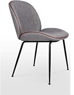 LRZS-Furniture Nordic Wrought Iron Beetle Dining Chair Modern Minimalist Chair Hotel Cafe Chair Conference Room Leisure Table Chair (Color : Gray)