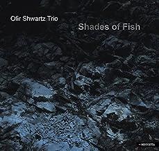 SHADES OF FISH(IMPORT)
