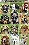 Educa Borras - Genuine Puzzles, Puzzle 500 piezas, Collage de perros (17963)