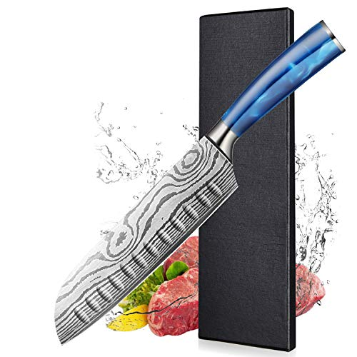 BILLION DUO Cuchillo japonés Santoku, Cuchillo de Cocina Profesional, Cuchillo Santoku de 17 cm, Cuchillo de Verduras, Mango Ergonómico de Resina Azu bnhj Caja de regalof