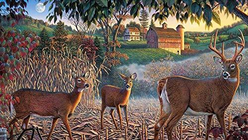 LSDEERE Paint by Numbers Painting DIY Digital Kit Canvas Artwork Paintings Gifts Decorations (16X20 In) Frameless Reindeer House