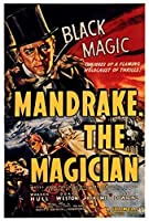 アルミメタルノベルティ危険サインインチ、マンドレーク魔術師、面白いリビングルームバークラブガーデンコーヒーショップウォールアートデコレーション
