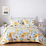 SunStyle Home Queen Size Quilt Set, Lightweight Microfiber Soft Coverlet Reversible Quilted Pattern Summer Quilt Bedspreads Comforter Set for All Season, 3 Piece Includes 1 Quilt + 2 Shams