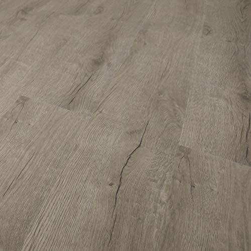TRECOR Vinyl-/LVT Klick Vinyl-Designboden Massivdiele 5 mm stark mit 0,5 mm Nutzschicht - Sie kaufen 1 m² - WASSERFEST - Bitte gewünschte Menge eintragen (Vinylboden, Prestige Eiche Grau)