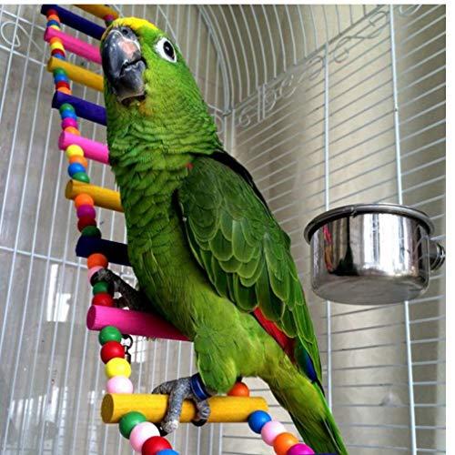 PiniceCore 6 Escaleras Animales Pájaros Loros Subir escaleras Juguete Bolas Colgantes Coloridas con Madera Natural