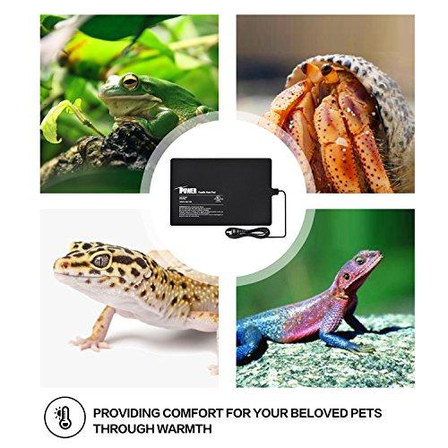 iPower 8 by 12-Inch 16 Watt Reptile Heat Pad Under Tank Terrarium Warmer Heat Mat for Small Animals