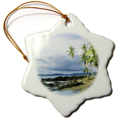 3dRose orn_87151_1 Drake Bay, Corcovado Np, Costa Rica-Sa22 Cbe0002-Christopher Bettencourt-Snowflake Ornament, 3-Inch, Porcelain