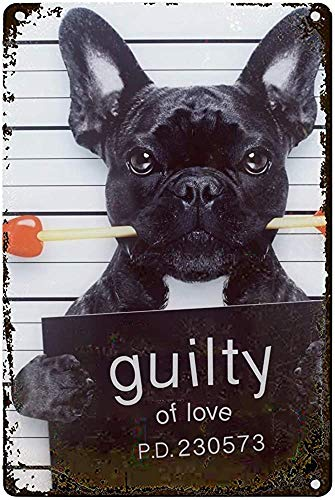Guilty French Bulldog Wall Tin Sign Retro Iron Poster Painting Plaque Metal Sheet Vintage Personalized Art Creativity Decoration Crafts for Cafe Bar Garage Home 12x16 inch