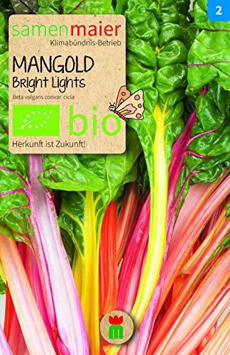 BIO Mangold Bright Lights (Beta vulgaris convar. cicla)