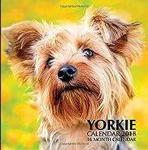Yorkie Calendar 2018: 16 Month Calendar