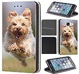 KX-Mobile Funda para iPhone 7/8/SE 2020, diseño 1360 Yorkshire...