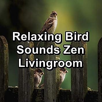 Relaxing Bird Sounds Zen Livingroom
