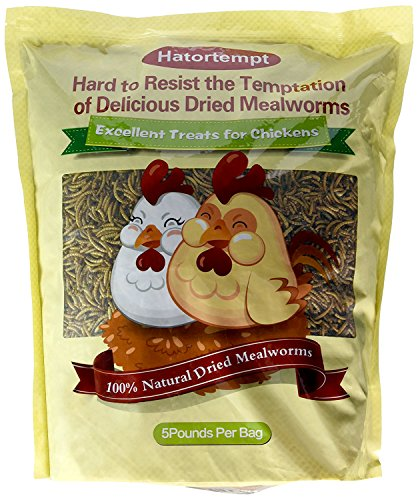 Hatortempt 5 lbs Non-GMO Dried Mealworms-High-Protein...