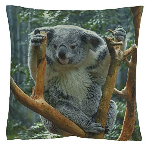 Kissenhüllen Kissenbezug 40x40 Kissen Dekokissen Kuschelkissen Tiermotive (Koala Koalabär)