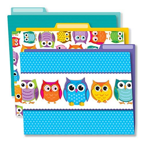 Carson Dellosa Colorful Owls File Folders (136009)